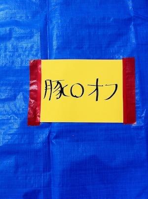 20110505_10_03_19